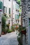 view of alley with traditional houses made with stones and flowers in portico di romagna italy