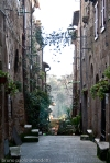 italian alley in pitigliano with houses and plants decorations at windows